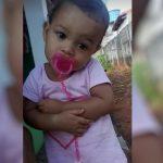 Menina morre horas após ser picada por escorpião em Quirionópolis