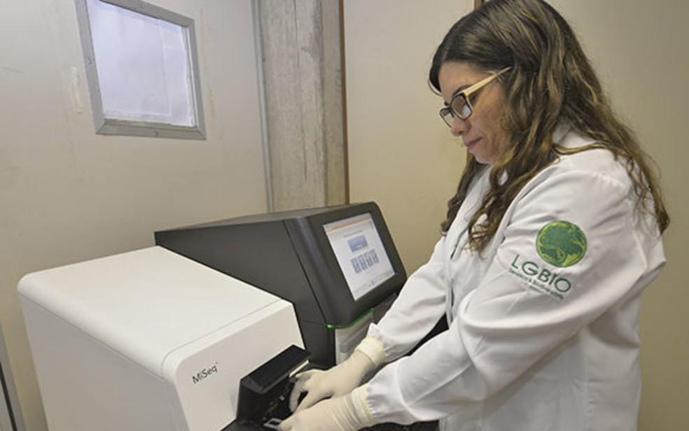 Coronavírus infecta 246.933 pessoas e provoca 5.564 mortes em Goiás, diz governo